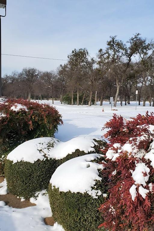 Snow at Life Care Center of Haltom